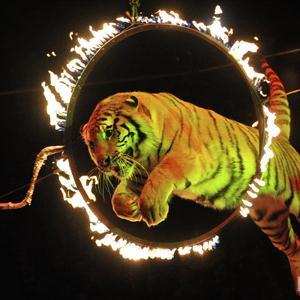 Цирки Верхней Сысерти