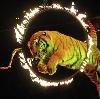 Цирки в Верхней Сысерти